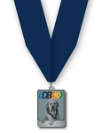 LDB5K Finisher Medal