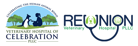 Reunion Veterinary Hospital