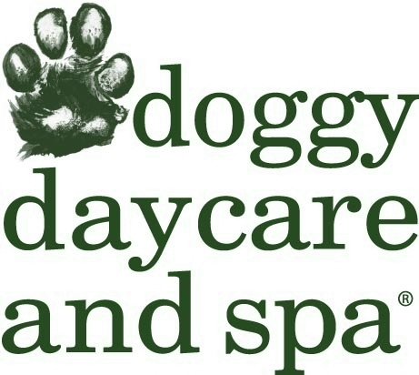 Doggy Daycare & Spa