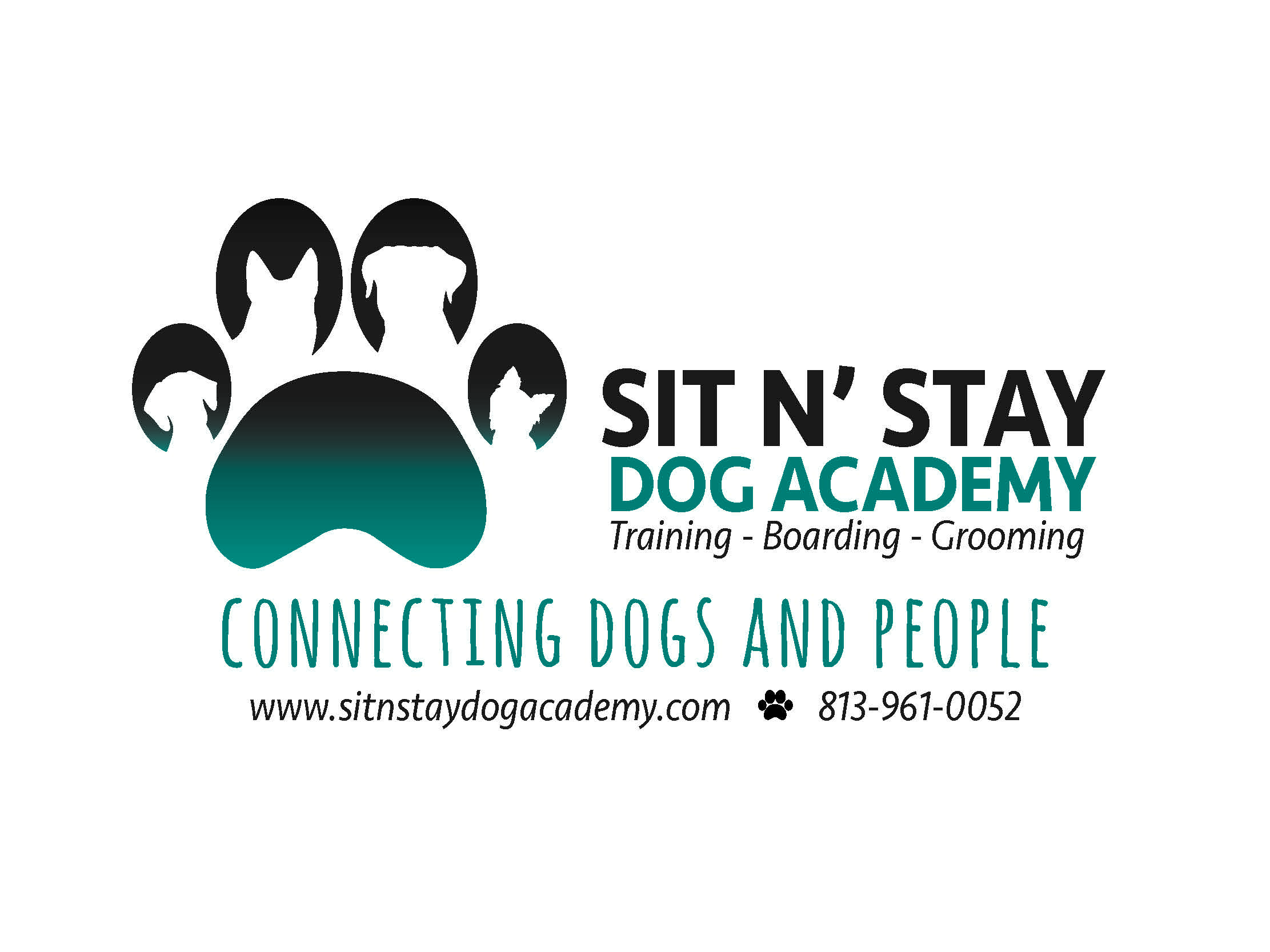 Sit N Stay Dog Academy