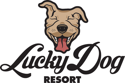 Lucky Dog Resort