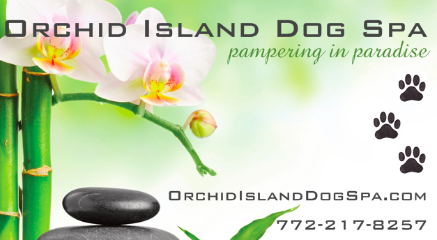 Orchid Island Dog Spa