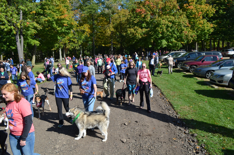 2019 Walk for the Animals