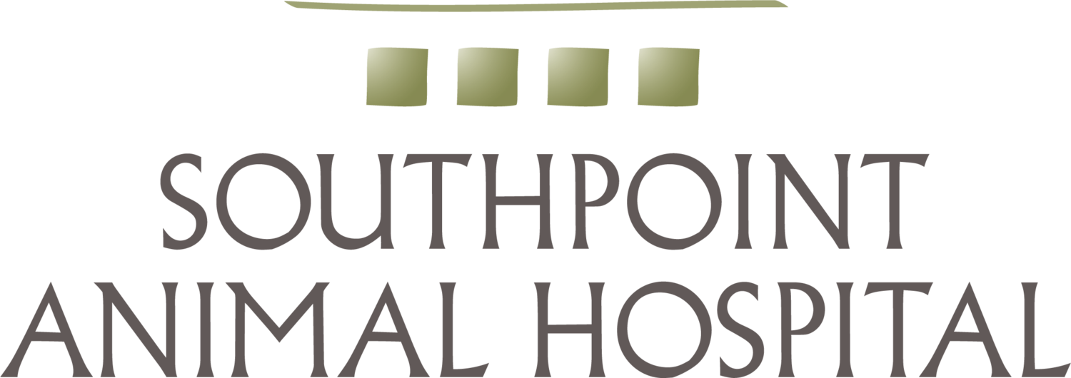 Soutpoint Animal Hospital